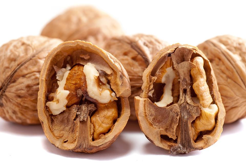 Alles wat je moet weten over de walnoot